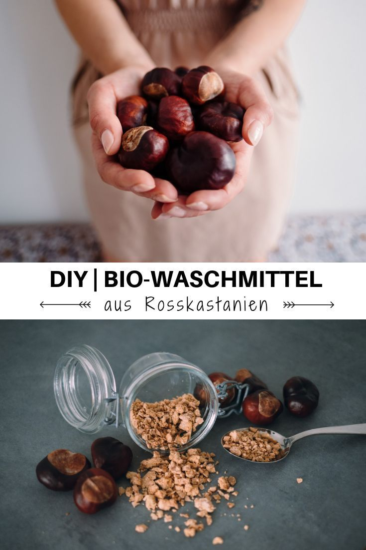 kostenloses Bio-Waschmittel aus Rosskastanien #kastaniendeko