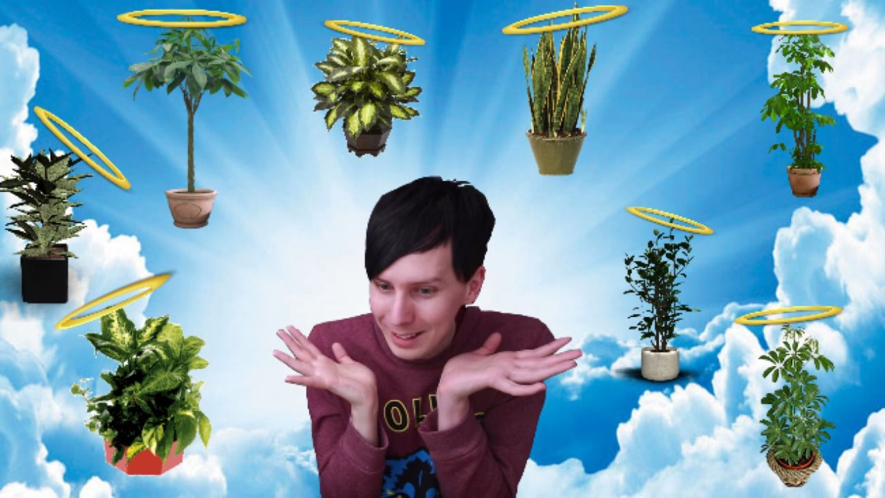 RIP Phil's House Plants
