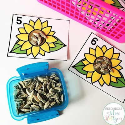 Photo of Exploration Stations or Centers for Kansas Day – Katie Roltgen Teaching