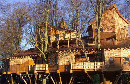 worlds largest treehouse cost 7 million to build this 6000 sq ft tree house