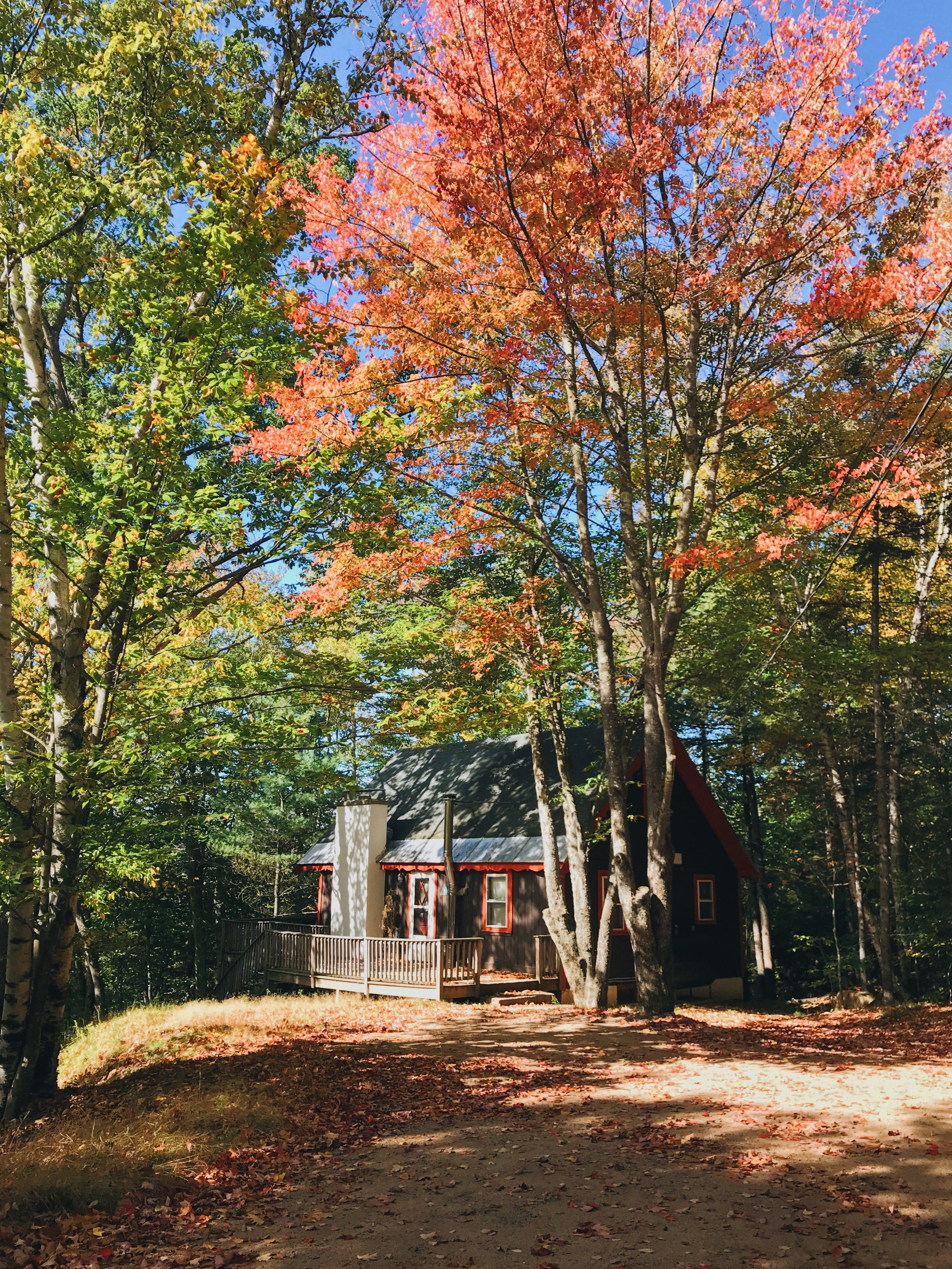 Cozy Artsy Little Cabin In The White Mountains Available On Airbnb Vrbo