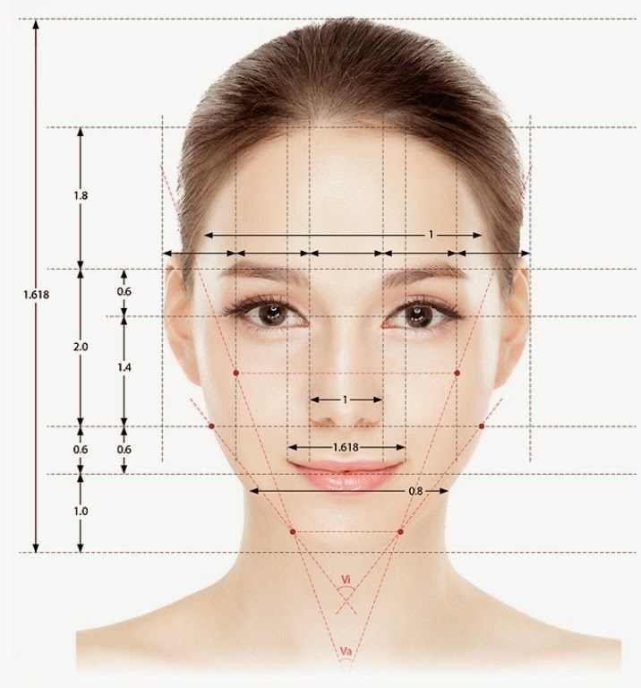 Golden ratio face google head and face drawing references golden ratio face google ccuart Image collections