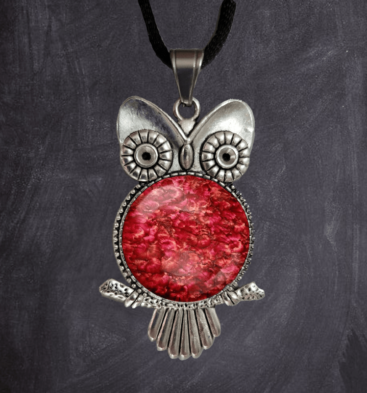 """Who who do you know is an Owl Lover? About: Owls represent wisdom, knowledge, change, transformation, intuitive development, and trusting the universe. Owls can show up when you are being asked to listen to your intuition. Our cute Hootie pendants are a unique gift for you or someone you love. Perfect for the owl lover.All pendants come in a black jewelry box . I'd be happy to include a gift note for you, just let me know! Description: The pendant is an owl silver-plated bezel 1.75"""" long with gl"""