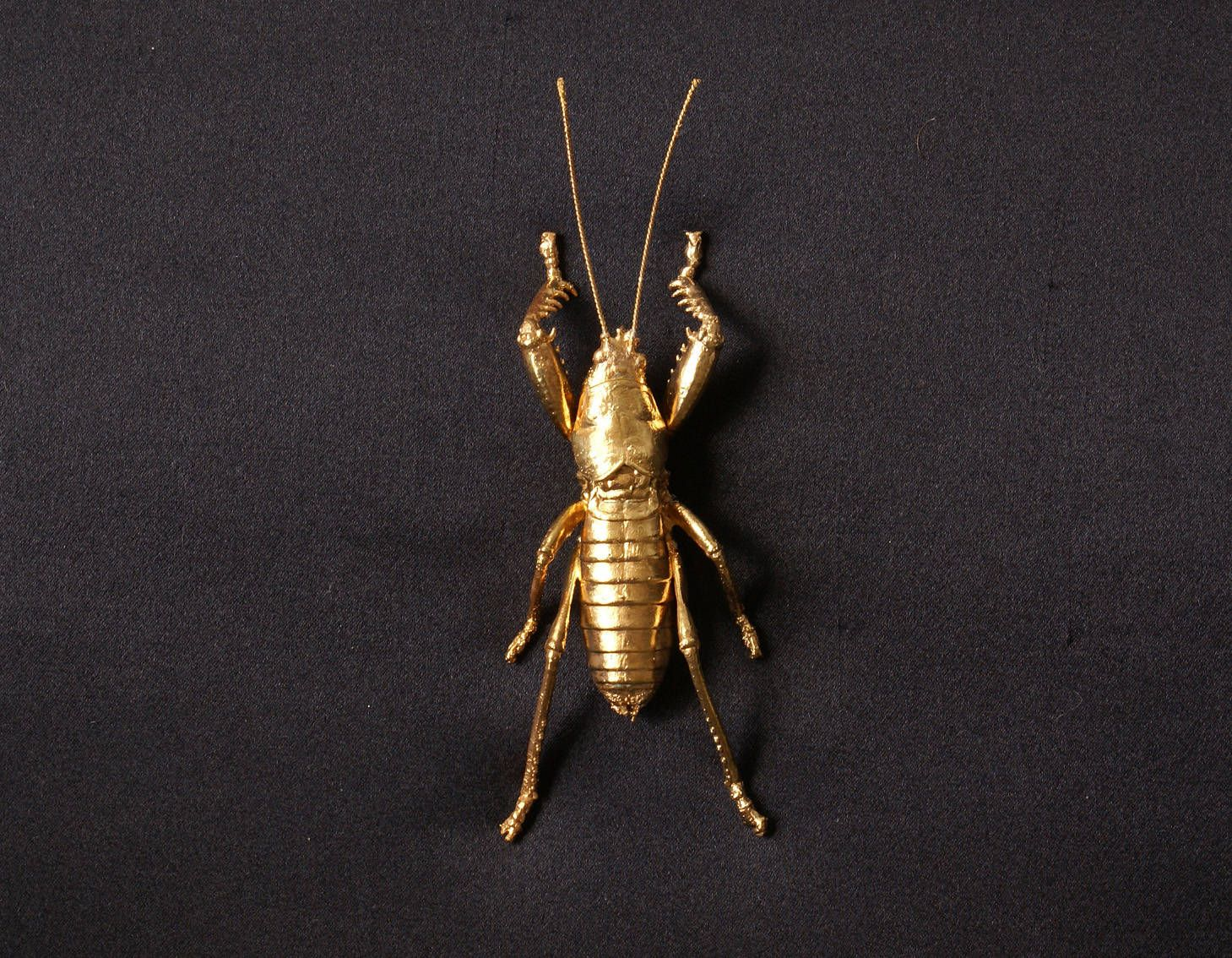 Brooch gold plated insect; real mantis gold plated | Käfer insekt ...