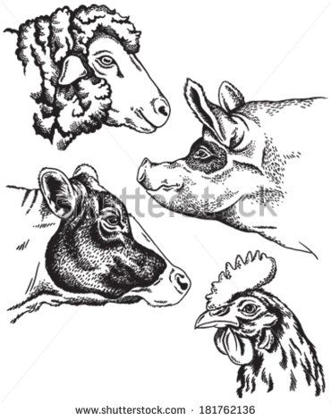 45+ County Fair Animals Clipart Black And White