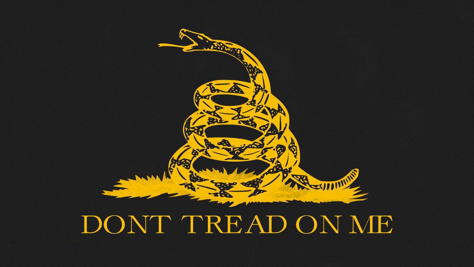 Обои snake, Dont tread on me, Metallica. Музыка foto 14