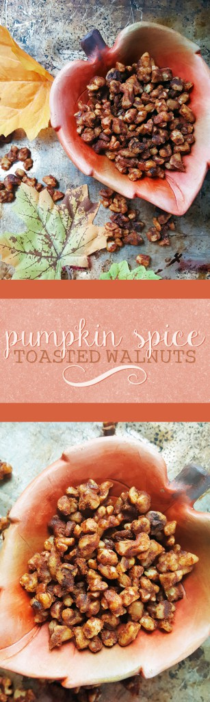Enjoy all of your favorite cozy, autumn flavors in these super easy pumpkin spice toasted walnuts!