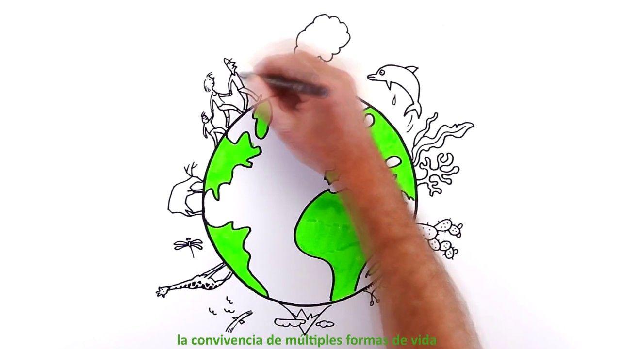 La Biodiversidad Es Vida La Biodiversidad Vida Medioambiente