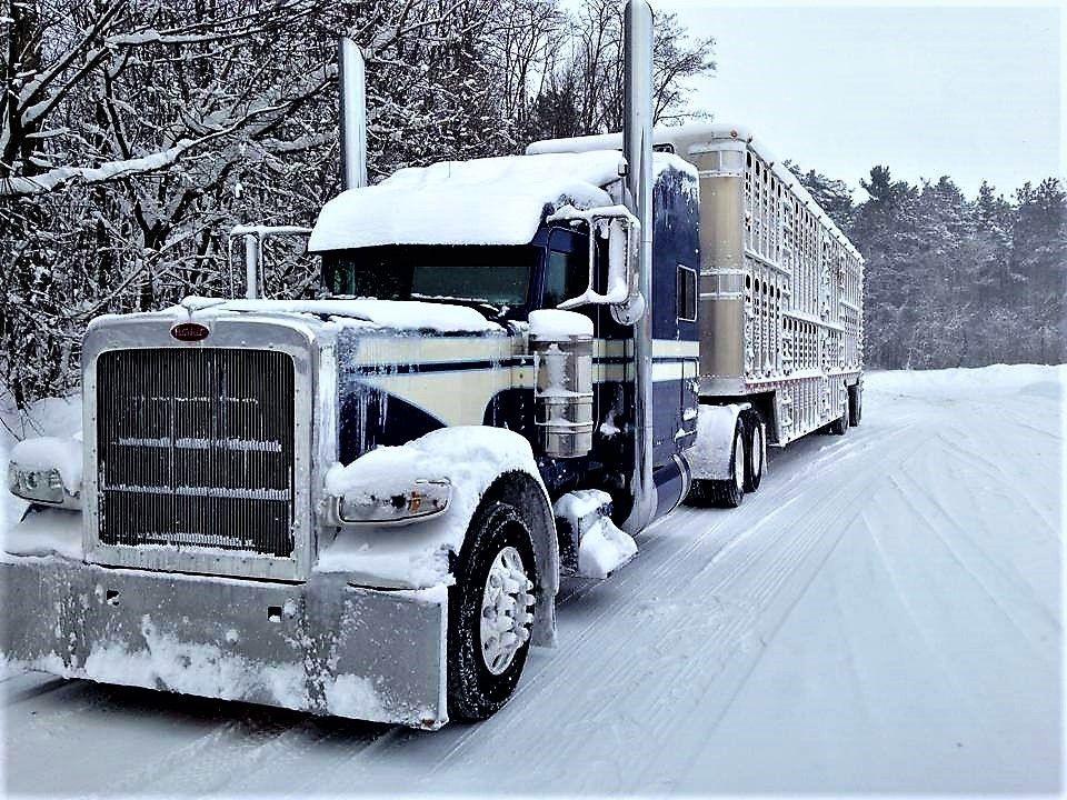 Semi Trucks Trucks, Big trucks, Semi trucks