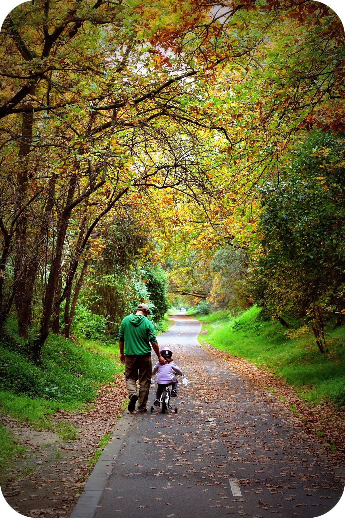 The Rail Trail In Autumn