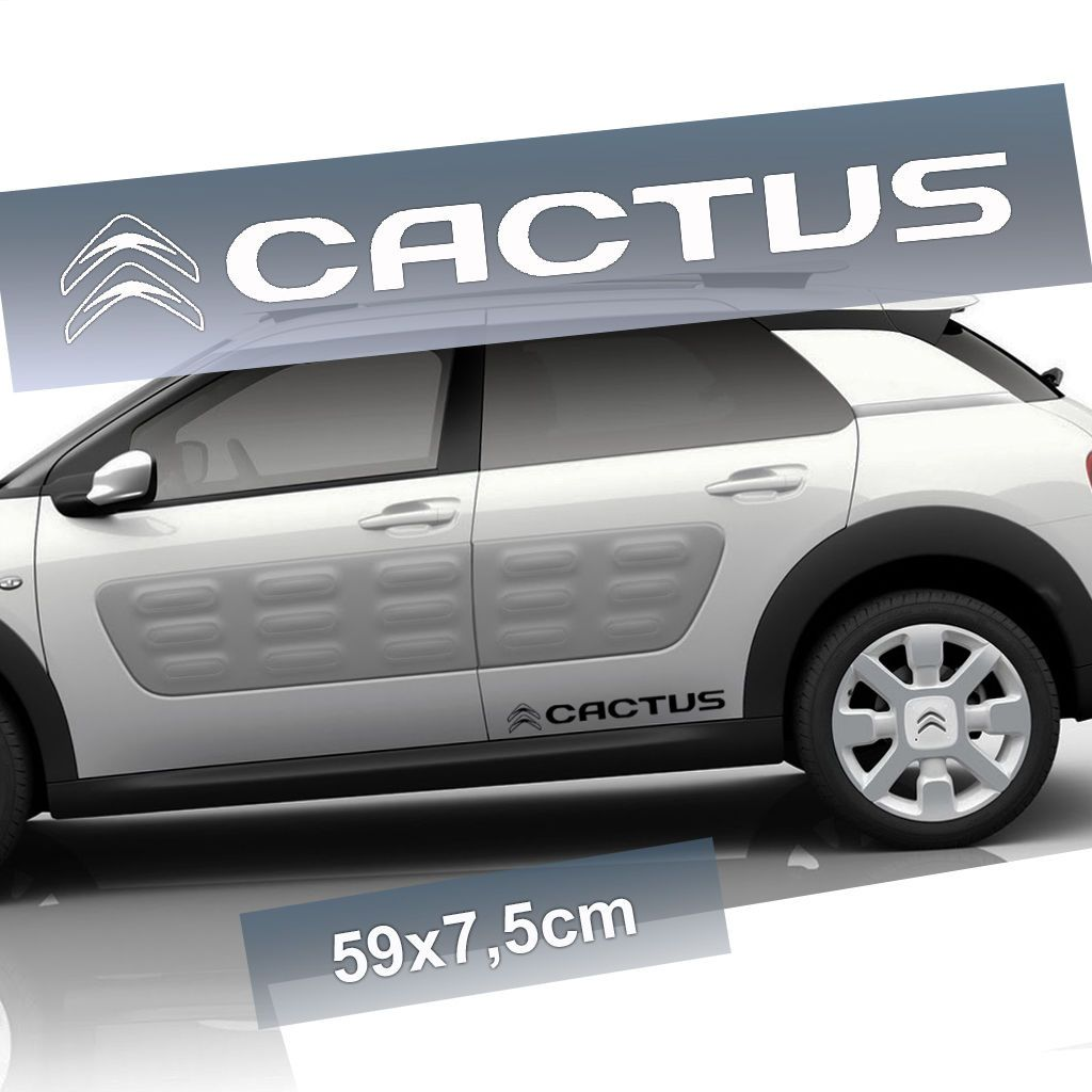 Citroen C Cactus Aventure LOHOVOZ Pinterest Cacti Cars And - Pouring hot water on this car reveals awesome hulk vinyl