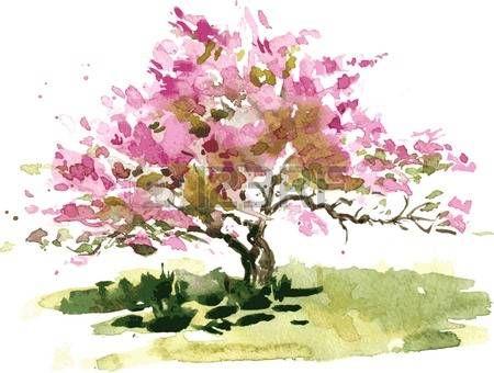 Aquarelle Fleur De Cerisier Dessin De L Arbre Par L Aquarelle