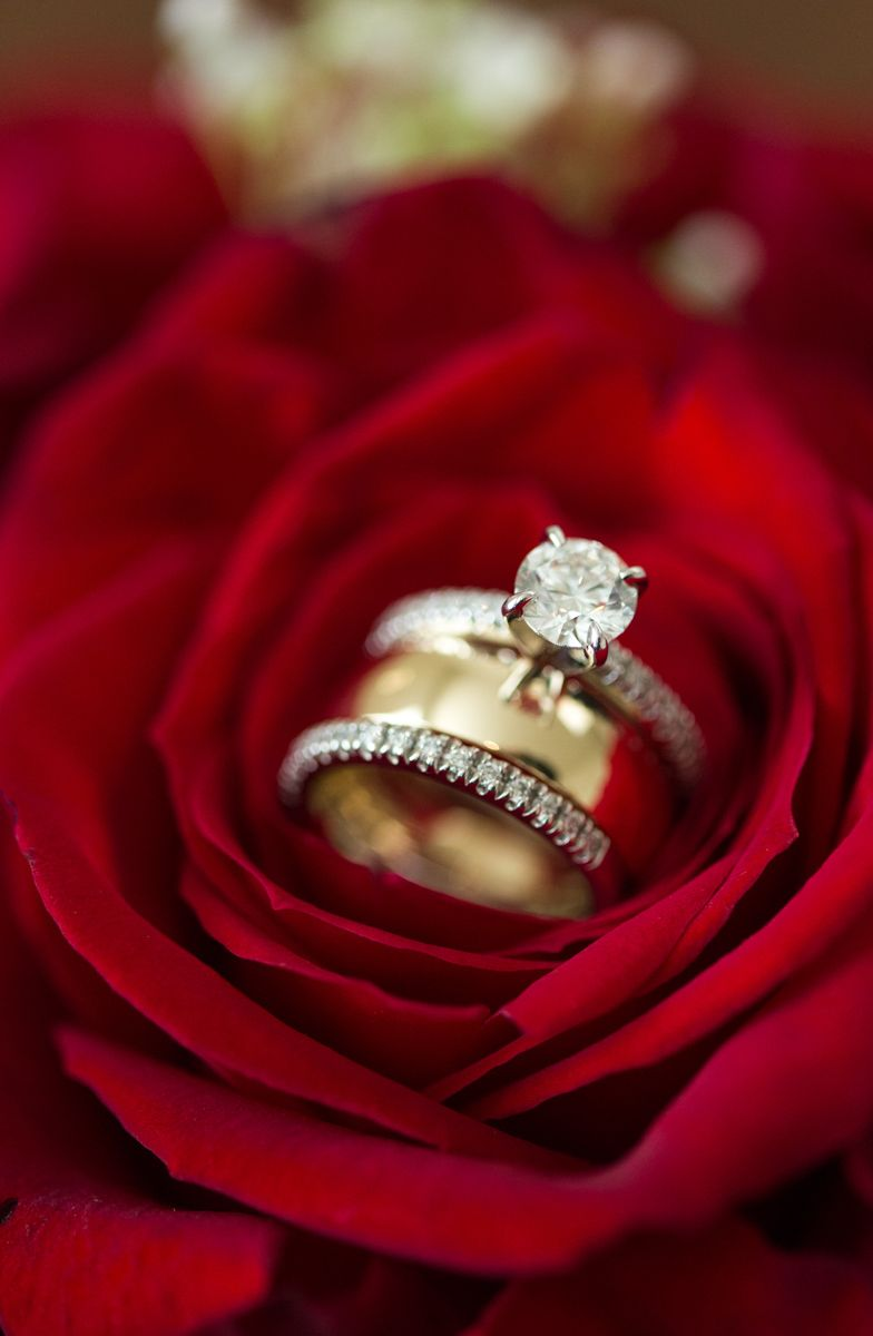 Wedding rings inside a red rose Wedding Details Pinterest