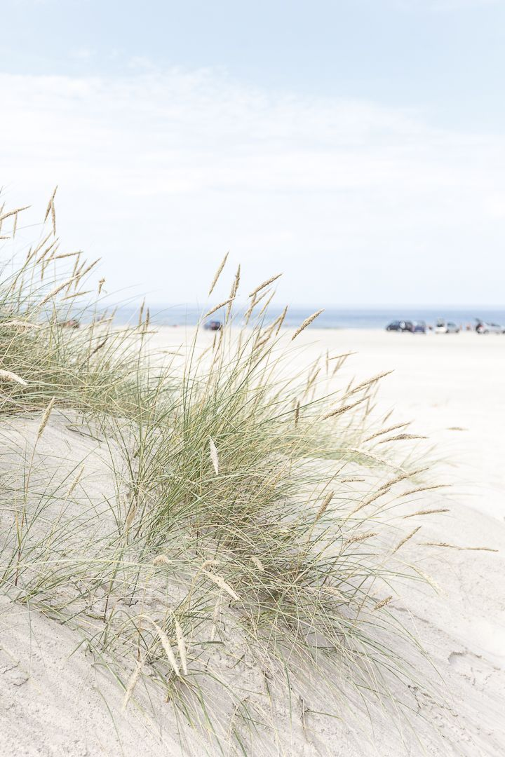 Amalie Loves Denmark Google Denmark Beach Malibu Farm
