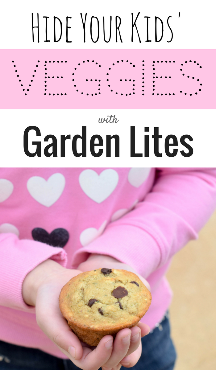 hidden veggies are your kids picky eaters have toddlers that wont eat anything try