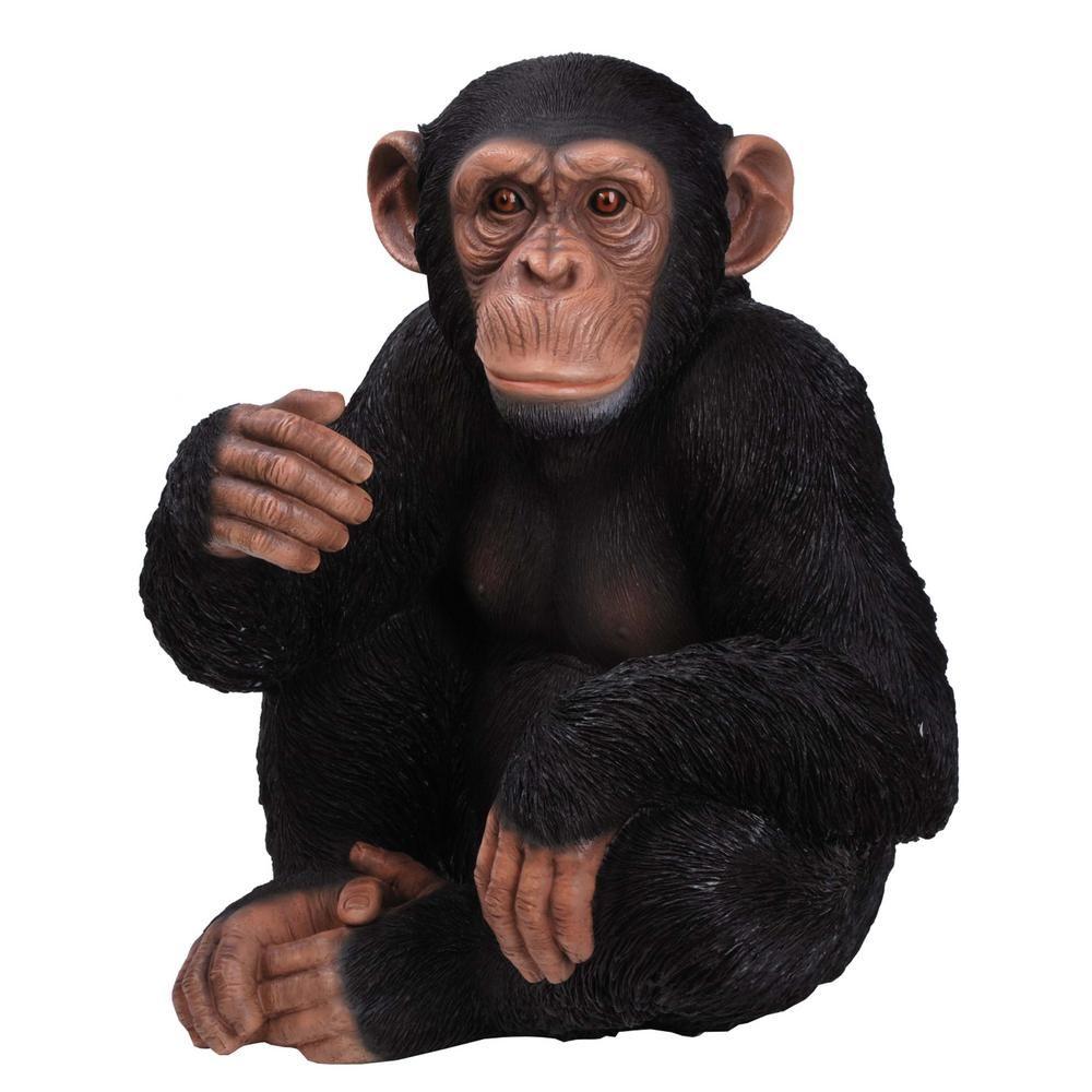 Hi Line Gift Monkey Sitting Statue 87806 Monkey Statue Statue Animal Ornament