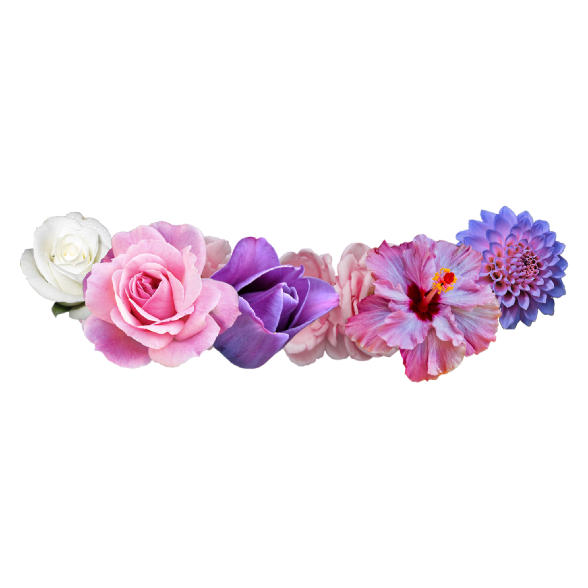Ftestickers Flowercrowns Freetoedit Remixit Flower Crown Tumblr Tumblr Flower Transparent Flowers