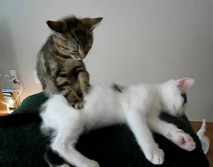 Just Relax. I Give you massage.