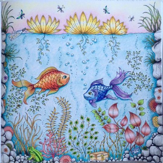 Johanna Basford Colouring Gallery Secret Garden Coloring Book Finished Secret Garden Coloring Book Lost Ocean Coloring Book