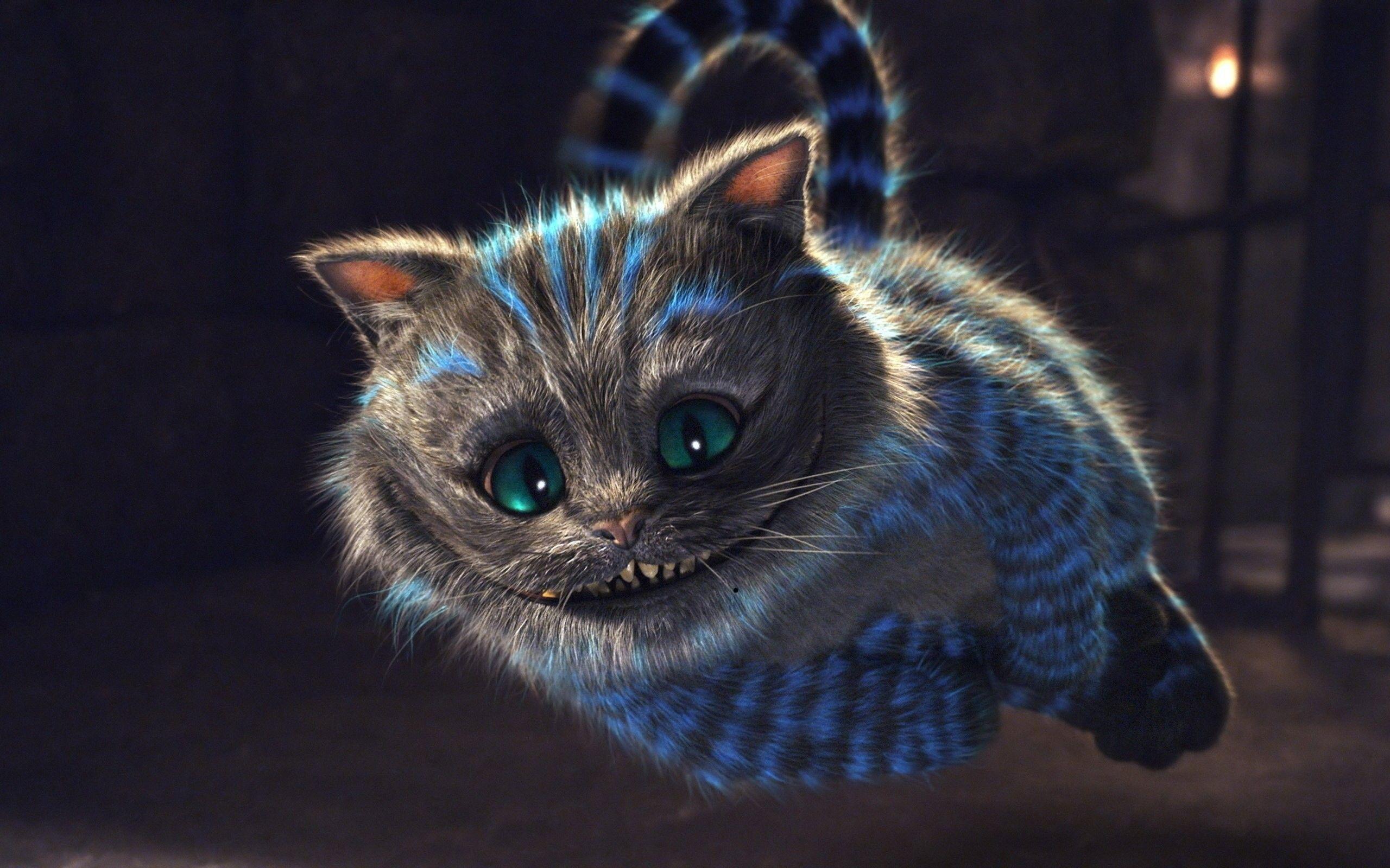 Most Inspiring Wallpaper Cat Mystical - e3cba36654b90204deb1dc8544560f38  Gallery_41416 .jpg