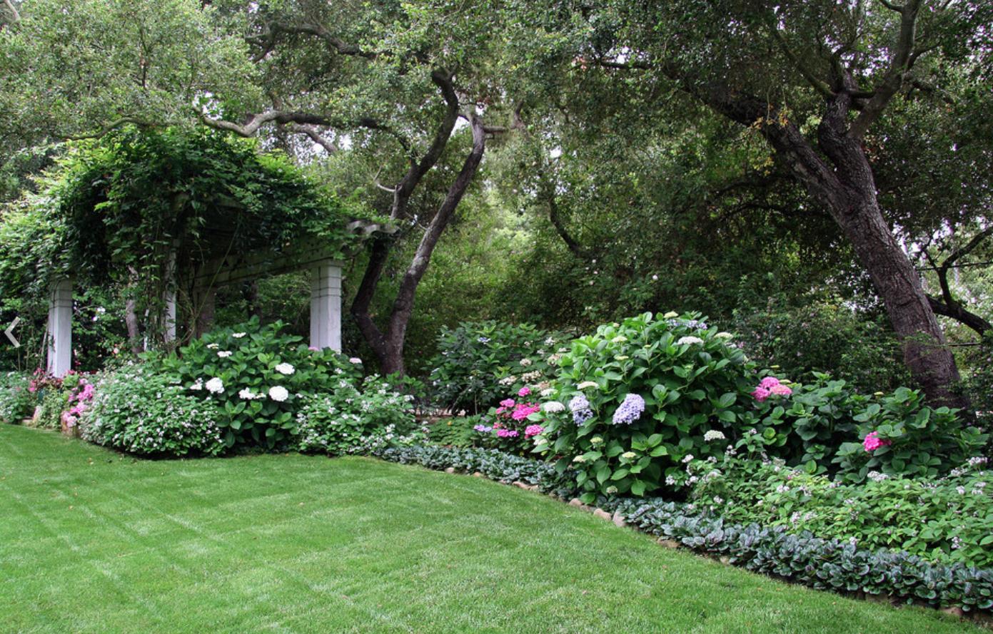 Backyard design   Garden ideas   Pinterest