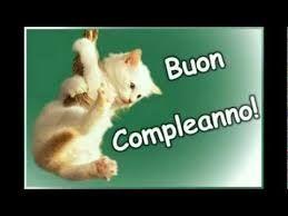 Risultati Immagini Per Buon Compleanno Con Gatti E Cani Buon