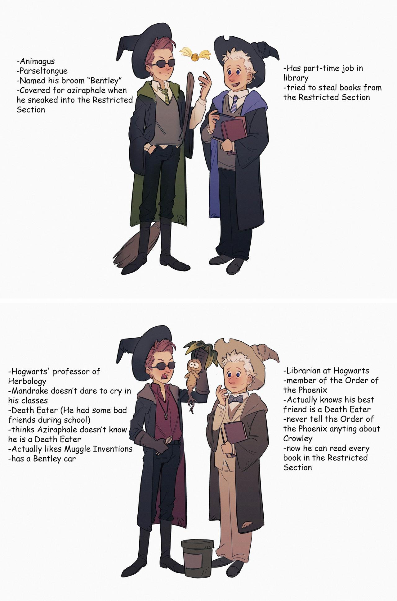 Harry Potter Au Good Omens Book Harry Potter Funny Harry Potter Memes