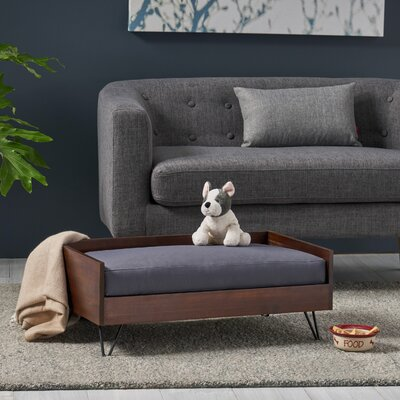 Surprising Tucker Murphy Pet Bugg Mid Century Modern Dog Sofa In 2019 Gmtry Best Dining Table And Chair Ideas Images Gmtryco
