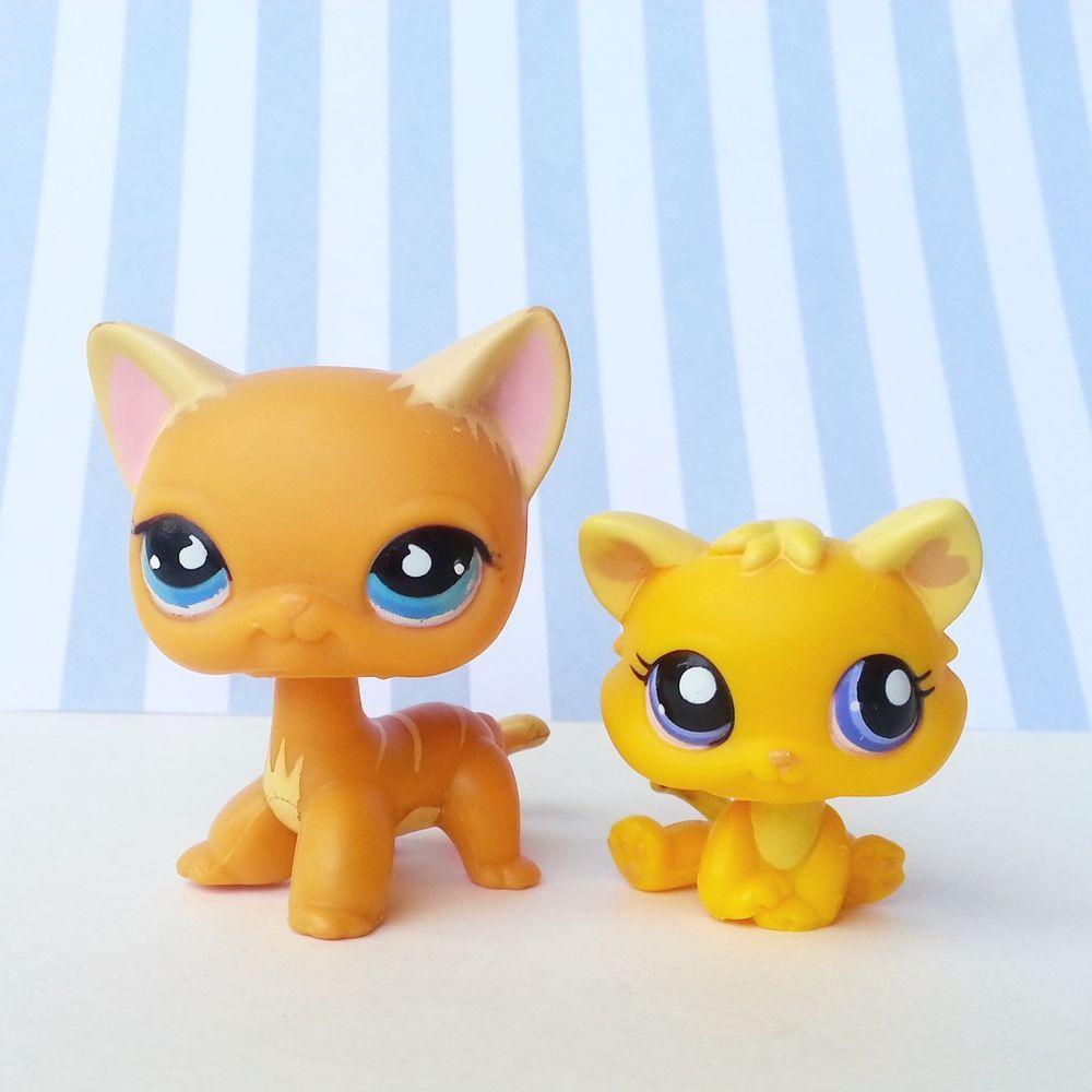 Littlest Pet Shop Orange Cat Blue Eyes Short Hair No Puzzle Yellow Kitten 1744 Littlest Pet Shop Little Pet Shop Toys Yellow Kittens