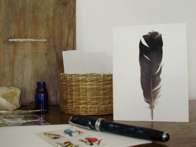 Heading Home Pigeon Feather Blank Greeting Card
