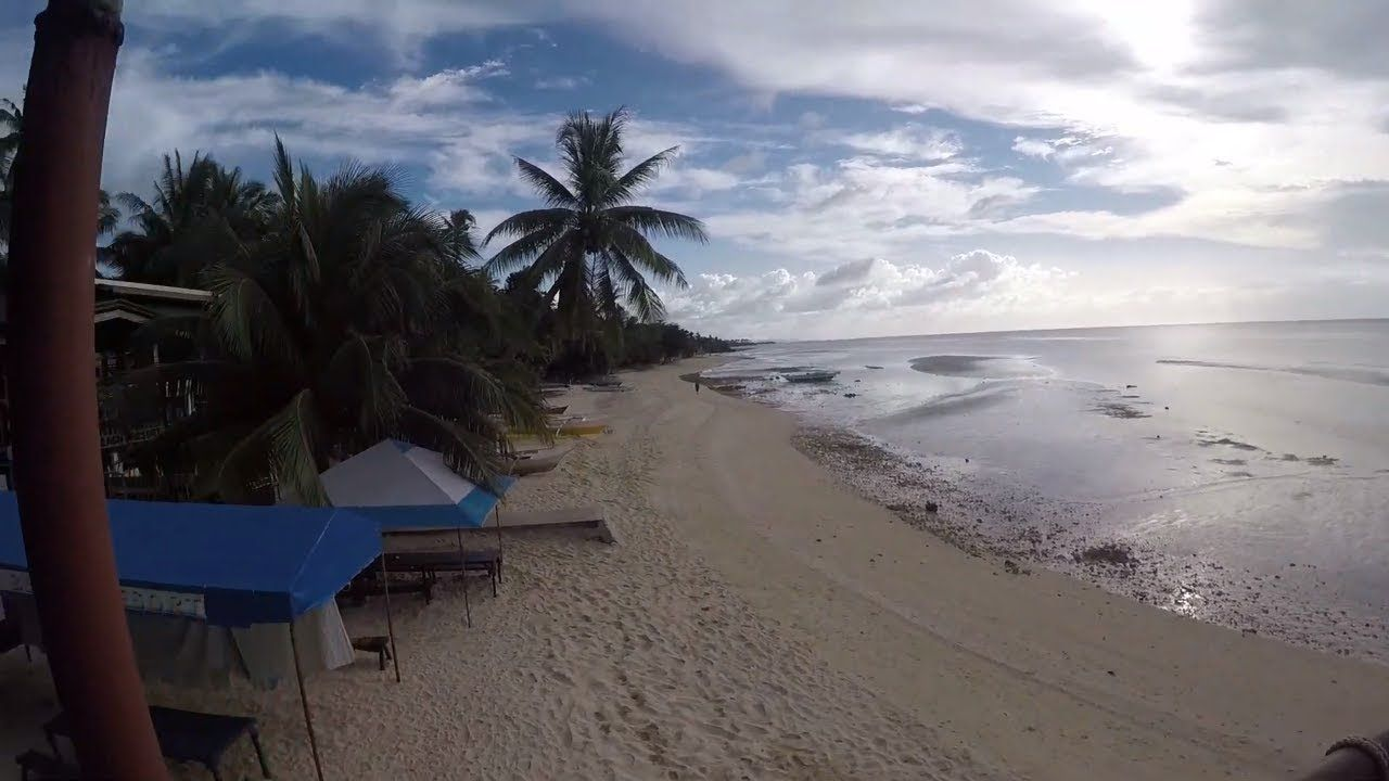 The Tree Sunset Maravilla Beach Tabuelan Cebu Island