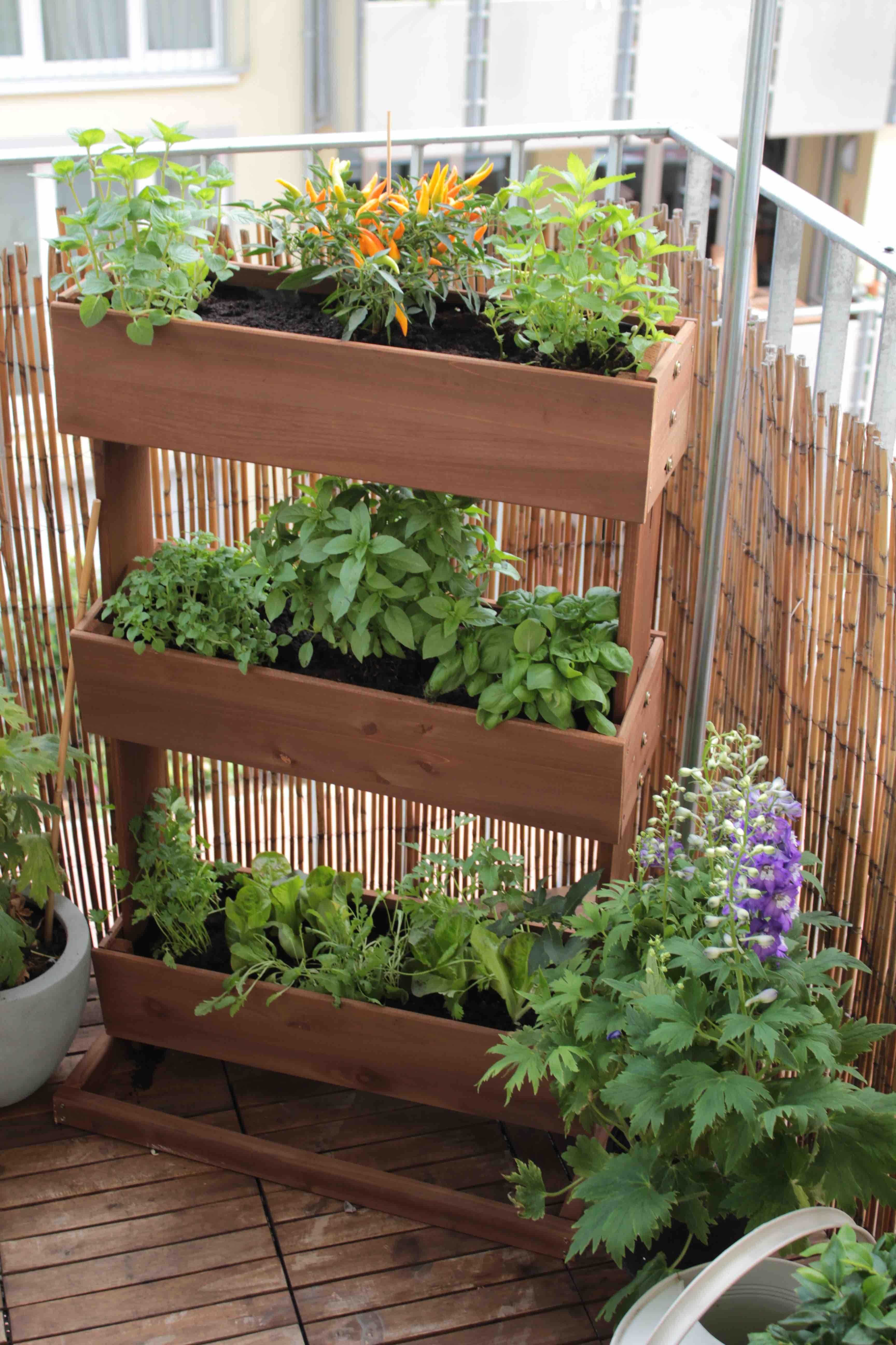 Hochbeet Diy Mal Anders Garten Fraulein Der Garten Blog Garten Balkongarten Pflanzgefasse