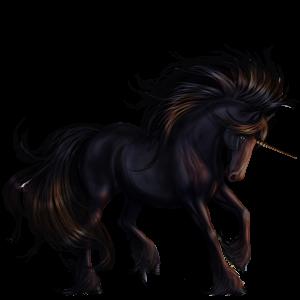 2016 04 04 Unicorn Friesian Black Unicorn Pictures Beautiful