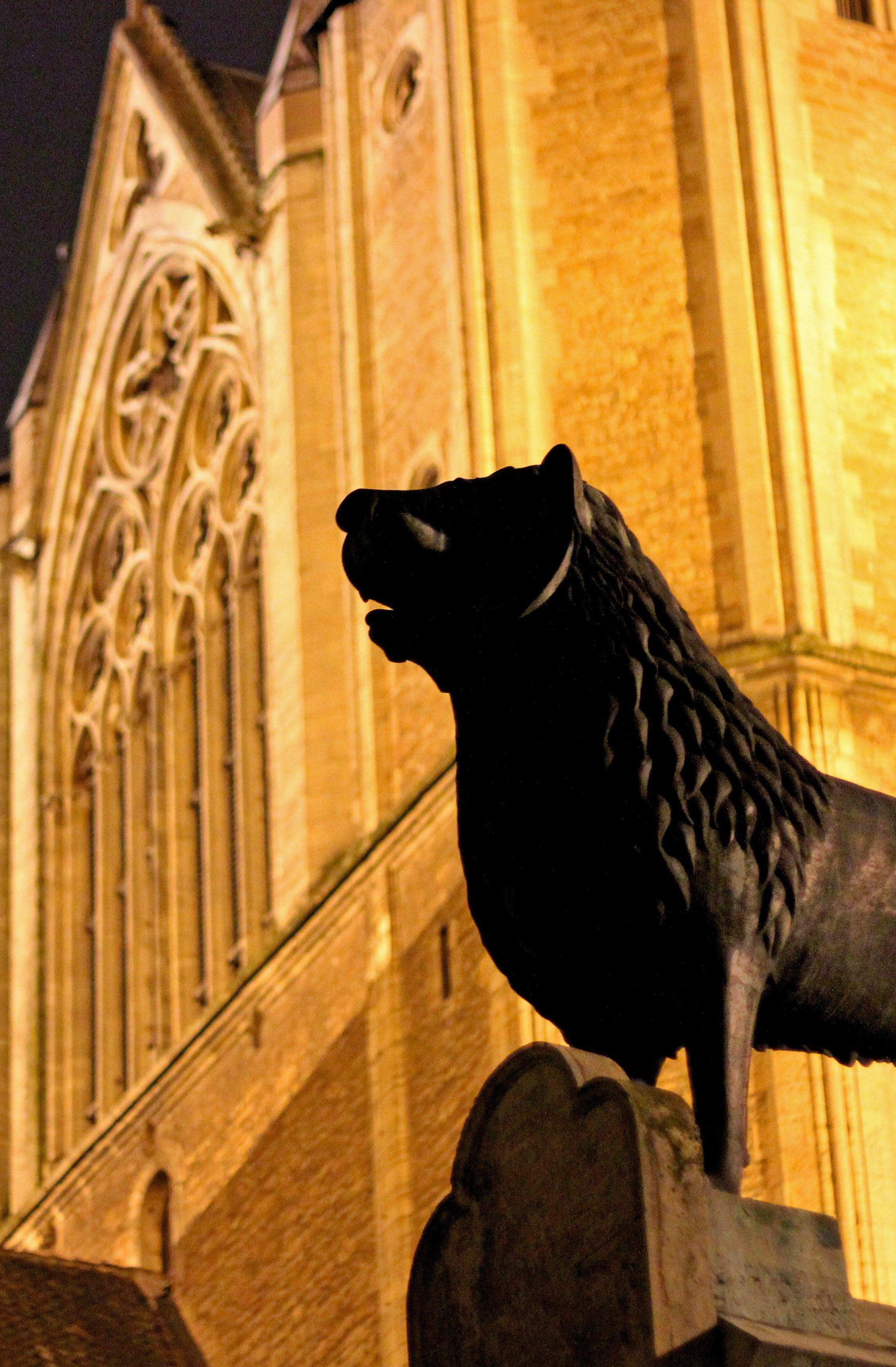 Braunschweigs Wahrzeichen Der Lowe Kann Auf Dem Burgplatz In Historischer Kulisse Besichtigt Werden Im Hintergrund Ist Der Brau Braunschweig Burg Innenstadt