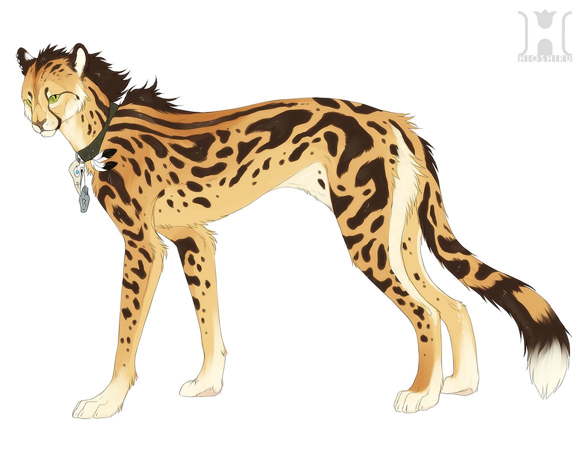 King cheetah design by Hioshiru.deviantart.com on @deviantART ...
