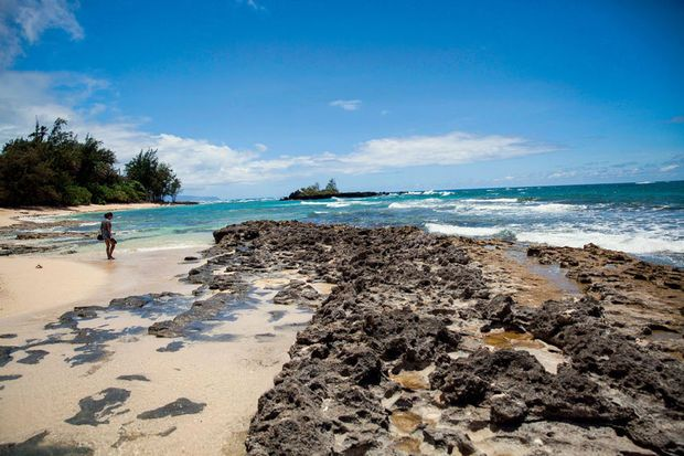 #travel & #tourism: #Hawaii Destination, cool #paradise http://hotel-world-travel-tourism.blogspot.com/2015/10/hawaii-destination-cool-paradise.html