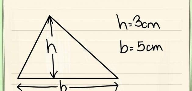 كيف أحسب ارتفاع المثلث Chart Novelty Sign Signs