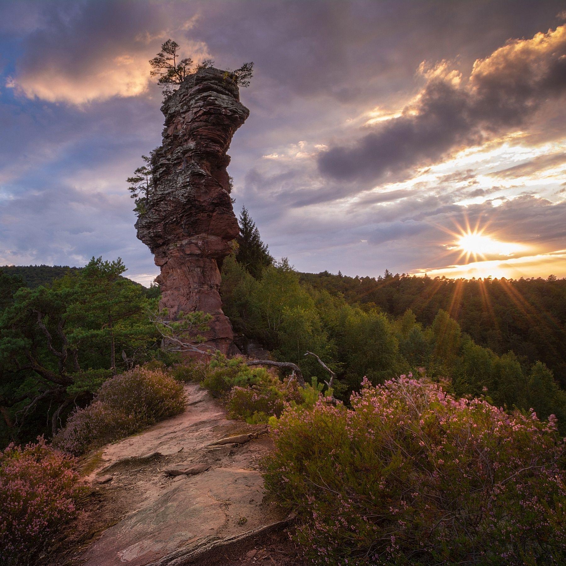Lämmerfelsen bei Sonnenuntergang Dahner Felsenland ...