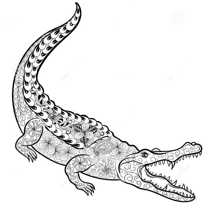 Alligator Coloring Pages Mandala Mandala Coloring Pages Coloring Pages Mandala Coloring