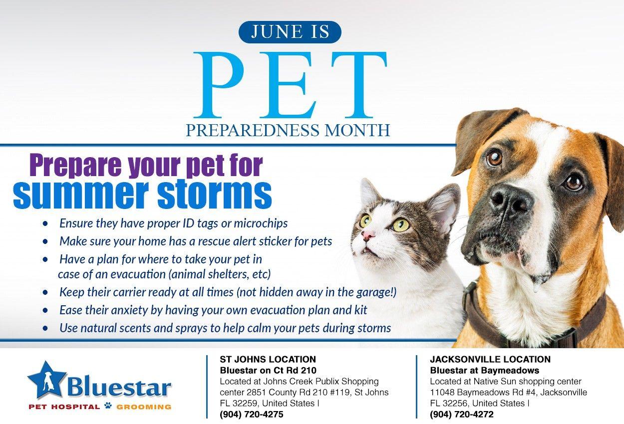 Pets Best Friend Veterinary Hospital