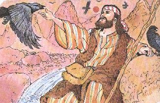 Bibbia Bambini ~ Elia and the ravens la sacra bibbia illustrata e raccontata a