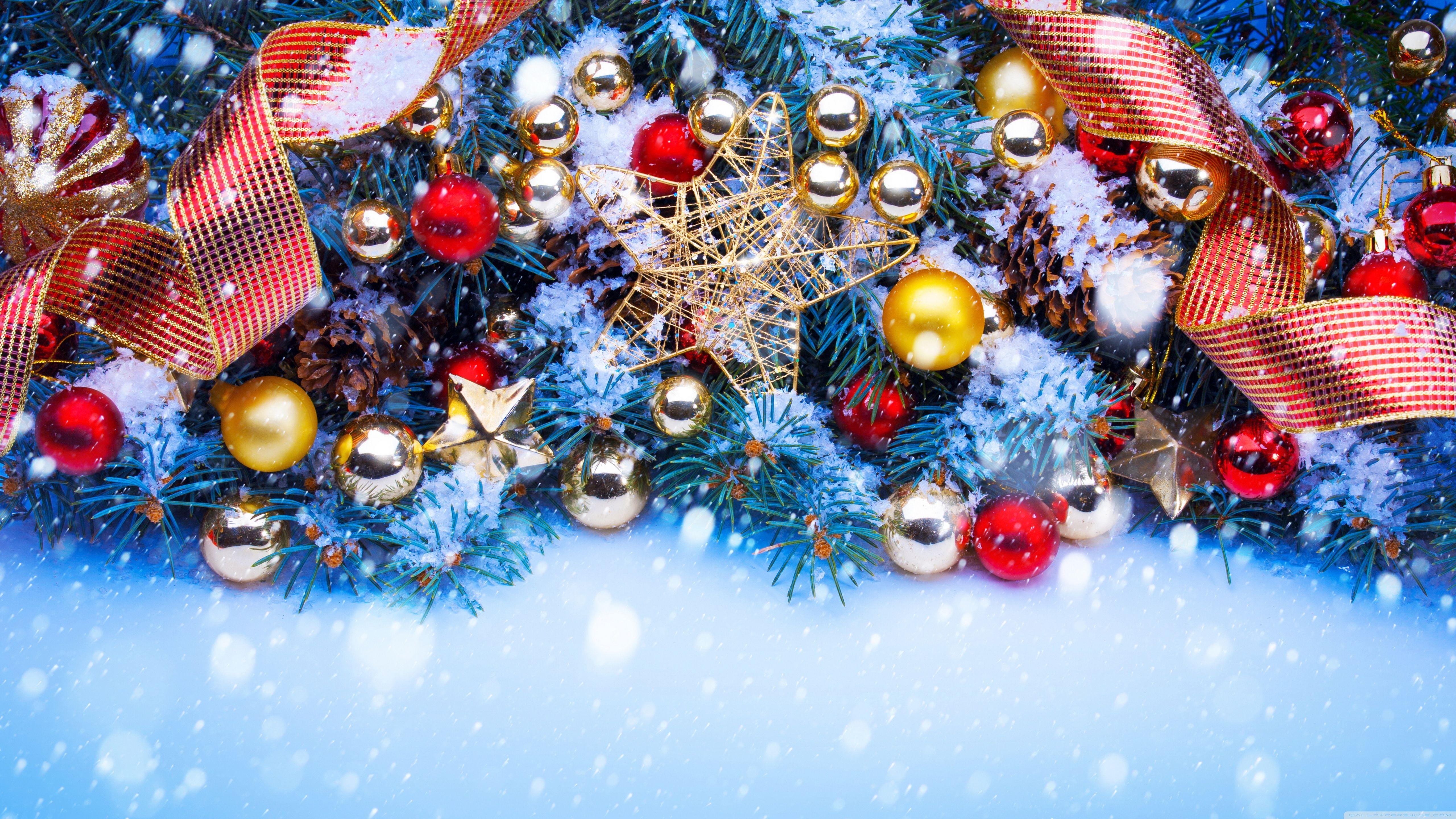 Beautiful Outdoor Christmas Tree HD desktop wallpaper