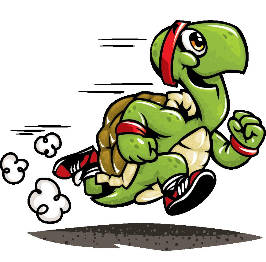 runningturtles.com | Running turtle | fitness stuff ...