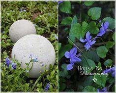 Hallo ihr Lieben,   bei uns ist es zwar gerade regnerisch und wieder etwas kälter geworden, dennoch wird für den Garten so einiges vorberei...