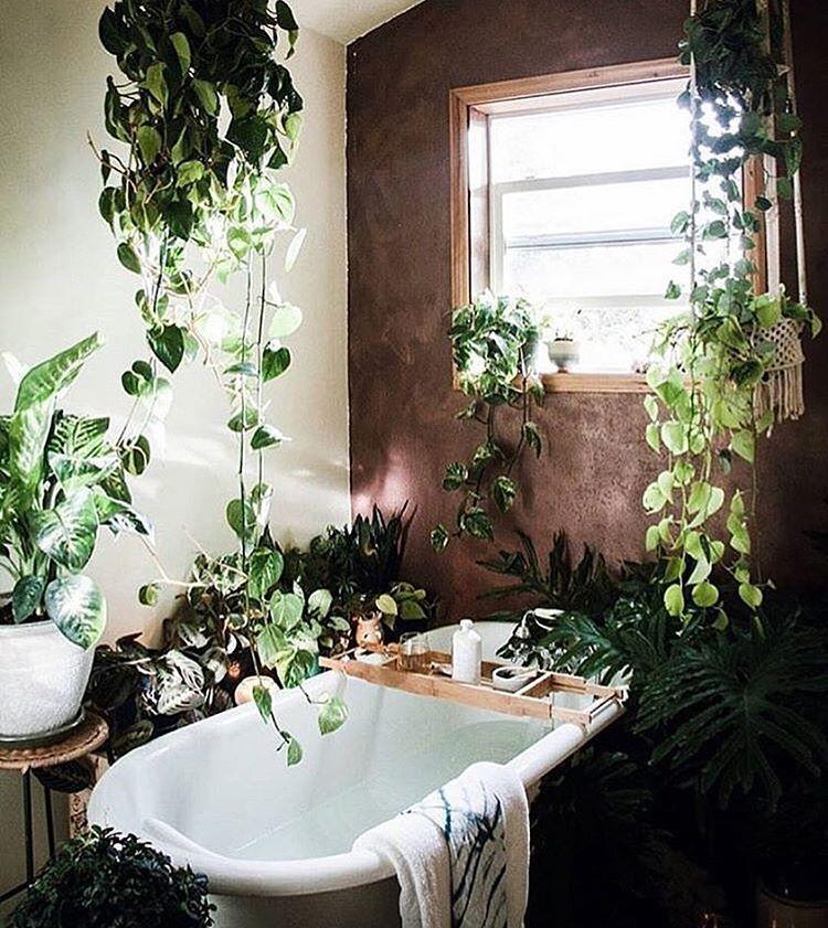Jungle bathroom | Garden home | Pinterest | Wg zimmer, Wohnideen und ...