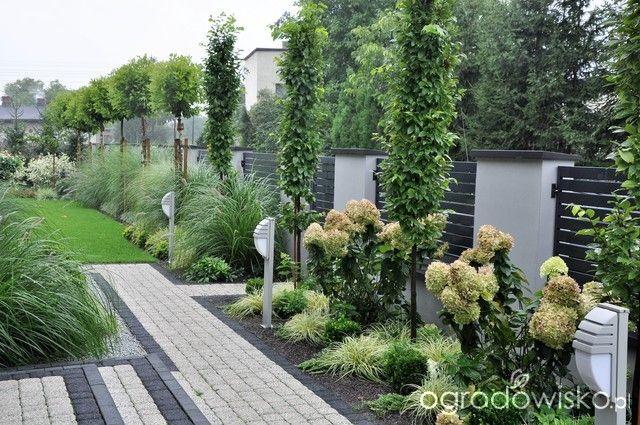 Lawendowy zawr t g owy strona 1779 forum ogrodnicze for Gartengestaltung joanna