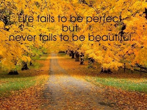 Beautiful Fall Quotes Quotesgram Quotes Autumn Fall Autumn Scenes