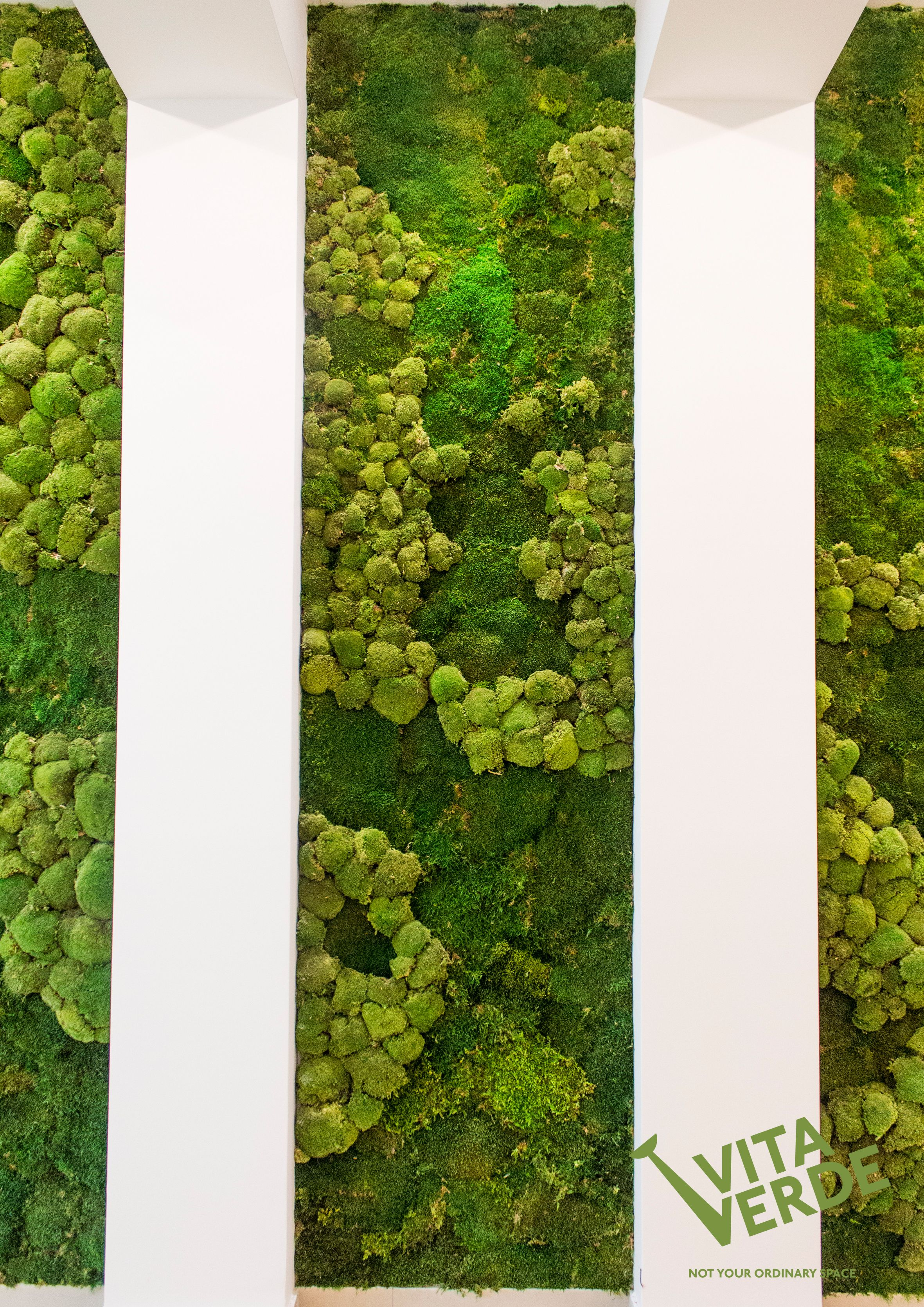 Mosswallideas Do You Want To Make People Feel Great Relaxed Happy Place A Moss Wall At Your Office To Reduce Str Vertical Garden Moss Wall Moss Wall Art