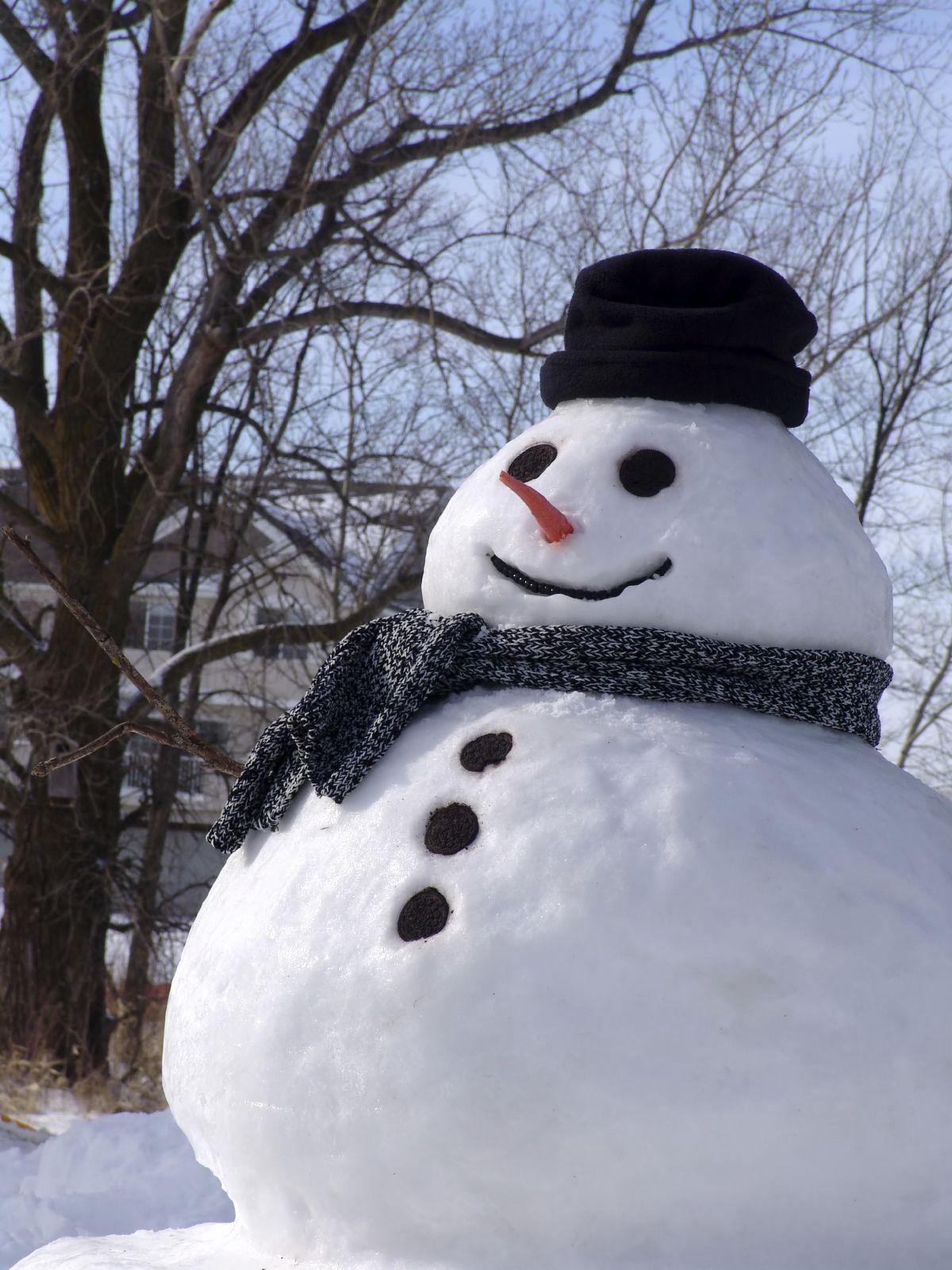 Too much egg nog?? (2009)   Snowman / Snow Fun   Snowman ...  Snowman Too Much Snow