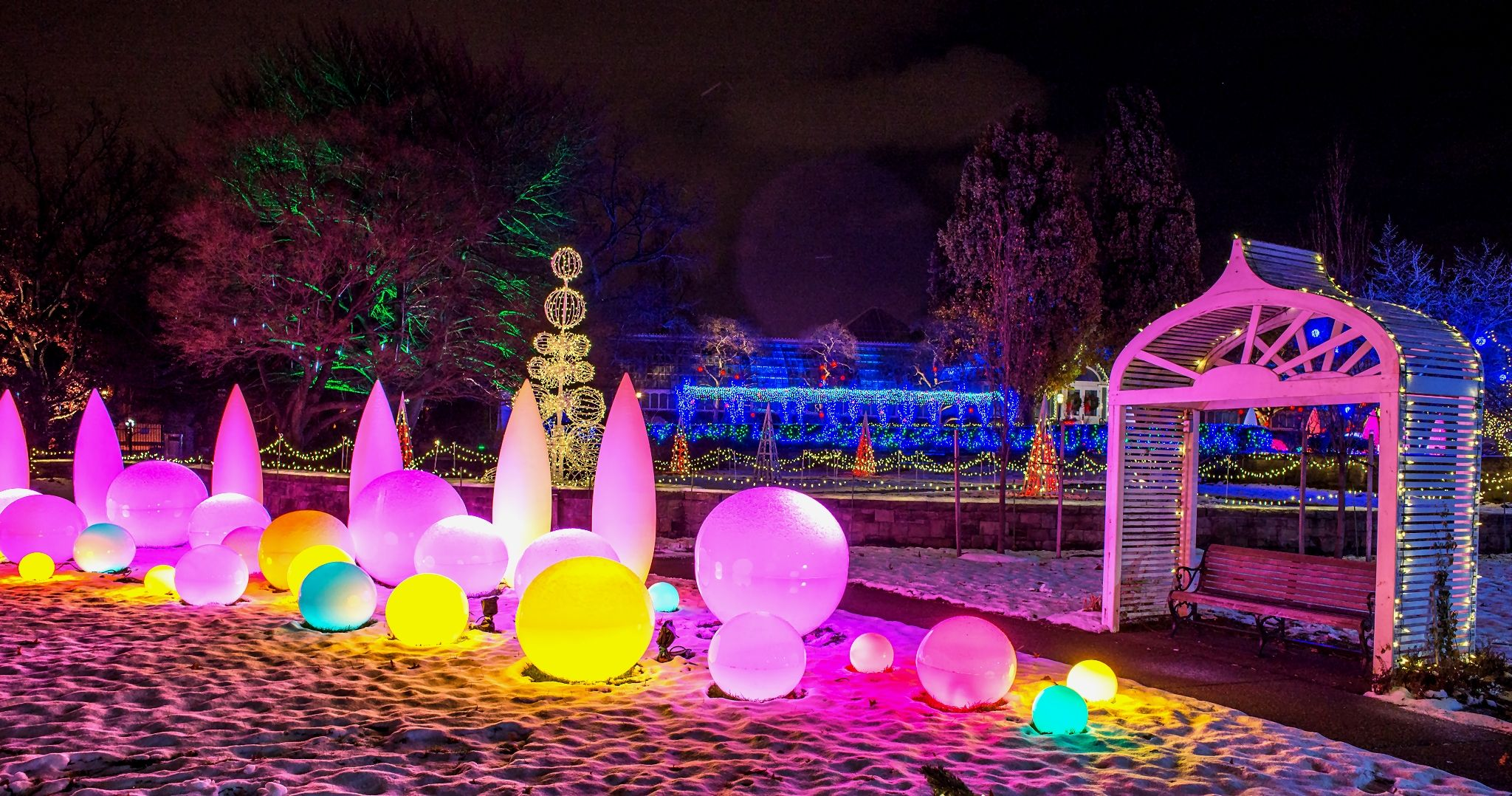 let the glow of our winter light garden lead your way through a